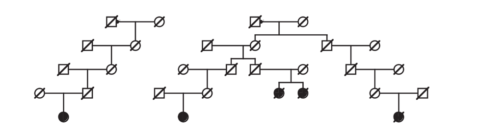 Familial Clustering Pedigree