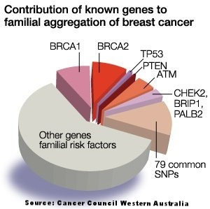 Familial aggregation of breast cancer